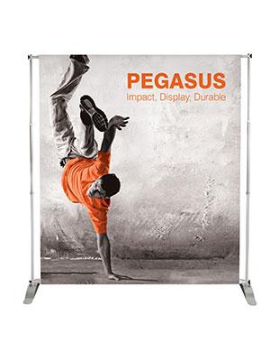 Pegasus_Large